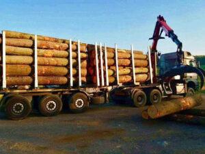 Palivové dřevo doprava